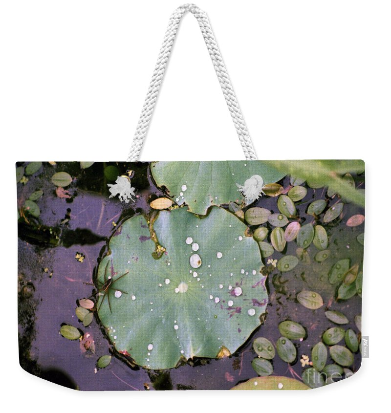 Lillypad Weekender Tote Bag featuring the photograph Spider And Lillypad by Richard Rizzo