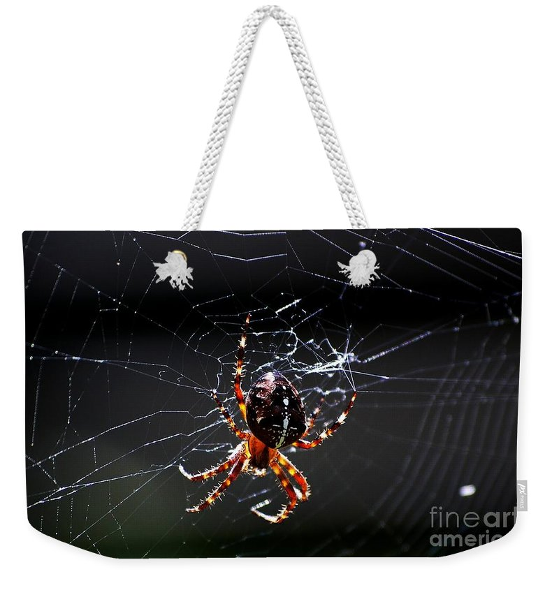 Digital Photo Weekender Tote Bag featuring the photograph Spider by David Lane