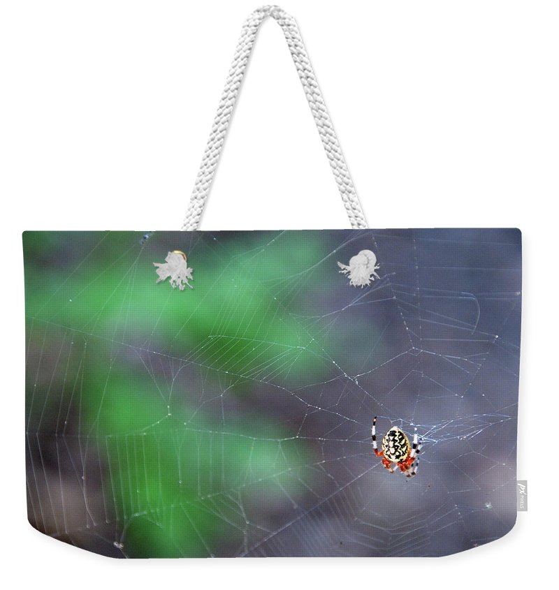 Animal Weekender Tote Bag featuring the photograph Spider In Web by David Arment
