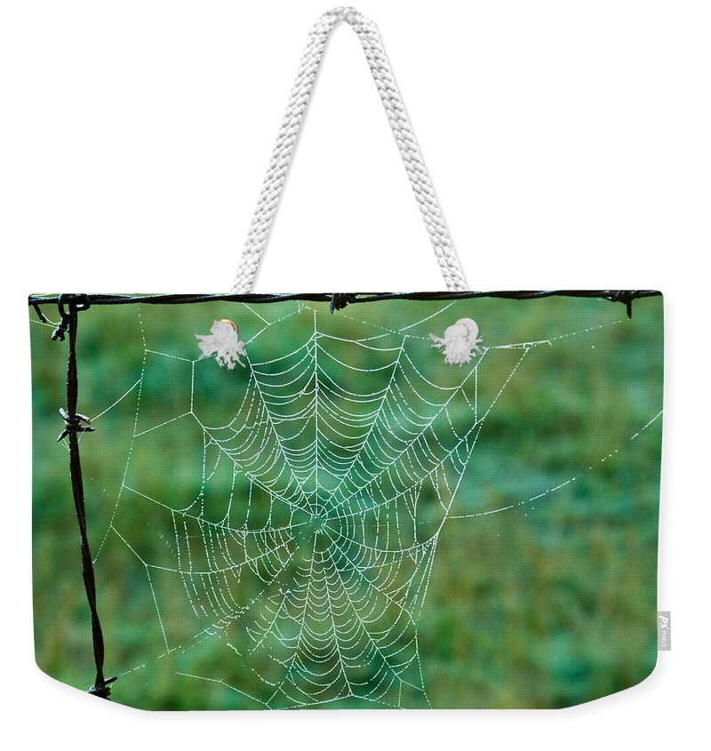 Spider Weekender Tote Bag featuring the photograph Spider Web In The Springtime by Douglas Barnett