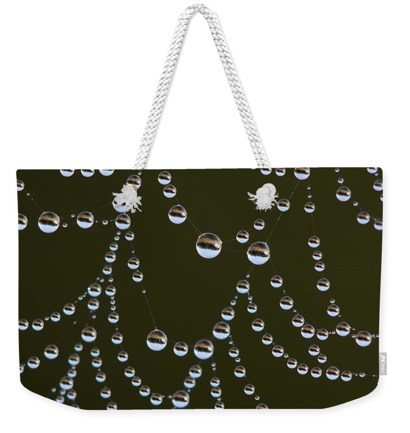 Astoria Weekender Tote Bag featuring the photograph Spider Web Landscapes by Robert Potts