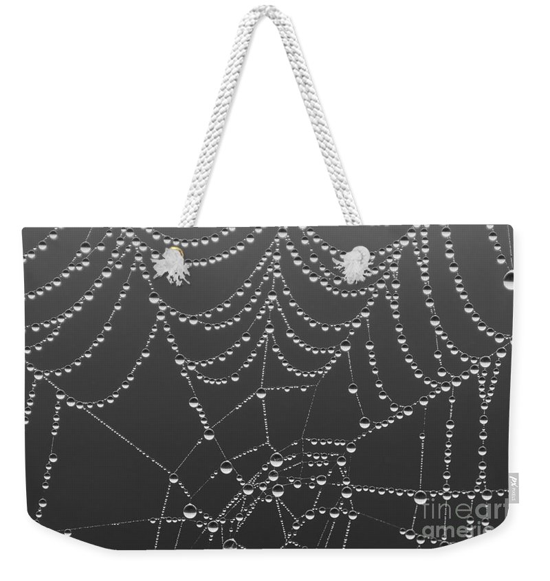 Aranae Weekender Tote Bag featuring the photograph Spider Web Patterns by Jim Corwin
