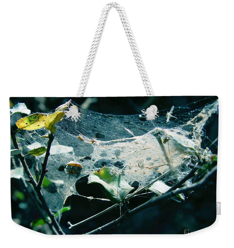 Spider Weekender Tote Bag featuring the photograph Spider Web by Peter Piatt