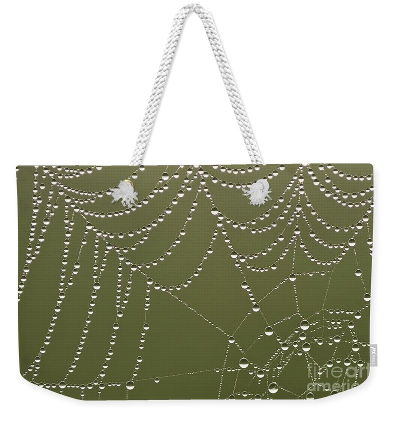 Aranae Weekender Tote Bag featuring the photograph Spider Web With Water Droplets by Jim Corwin