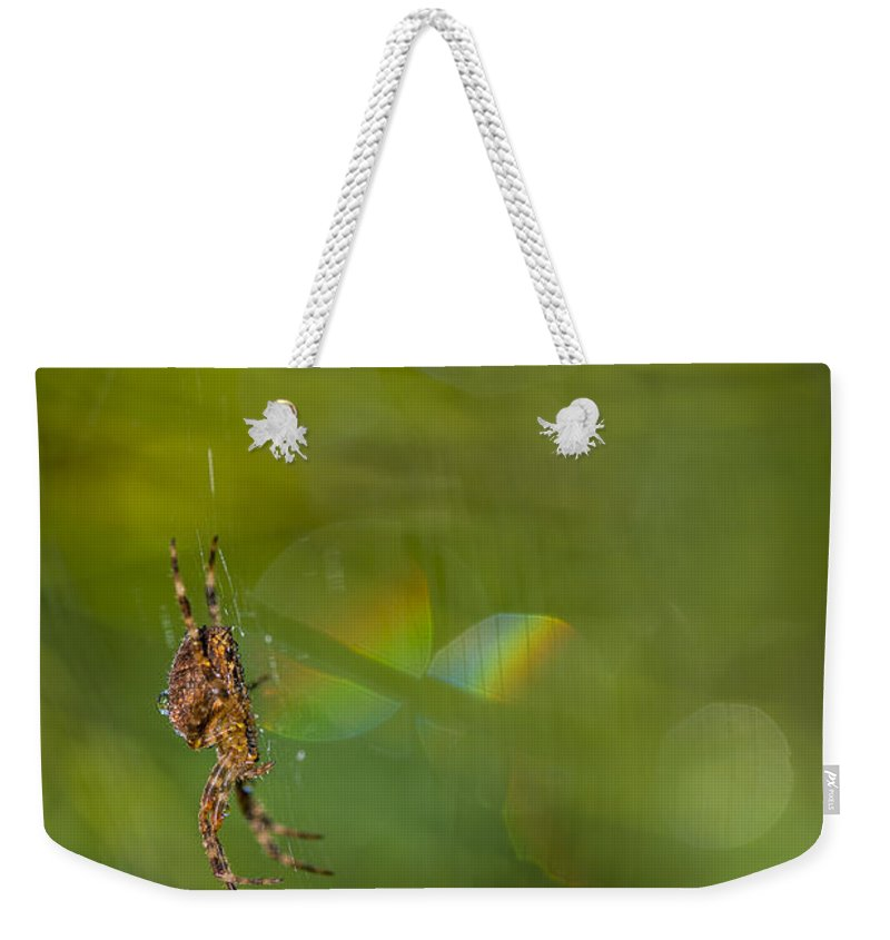 Astoria Weekender Tote Bag featuring the photograph Spider's Cosmos by Robert Potts