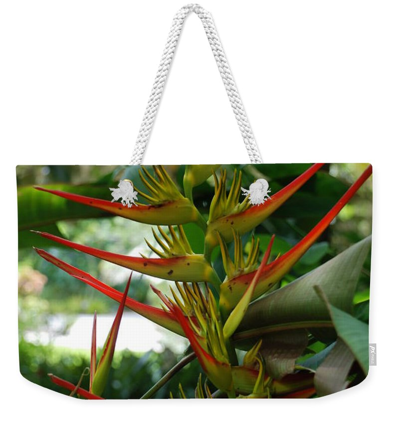 Spike Weekender Tote Bag featuring the photograph Spike Plants by Rob Hans