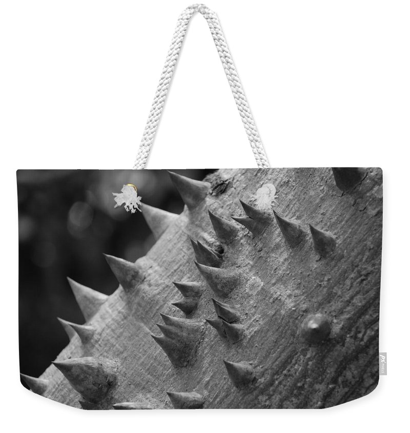 Spike Weekender Tote Bag featuring the photograph Spikey Thorny Tree by Rob Hans