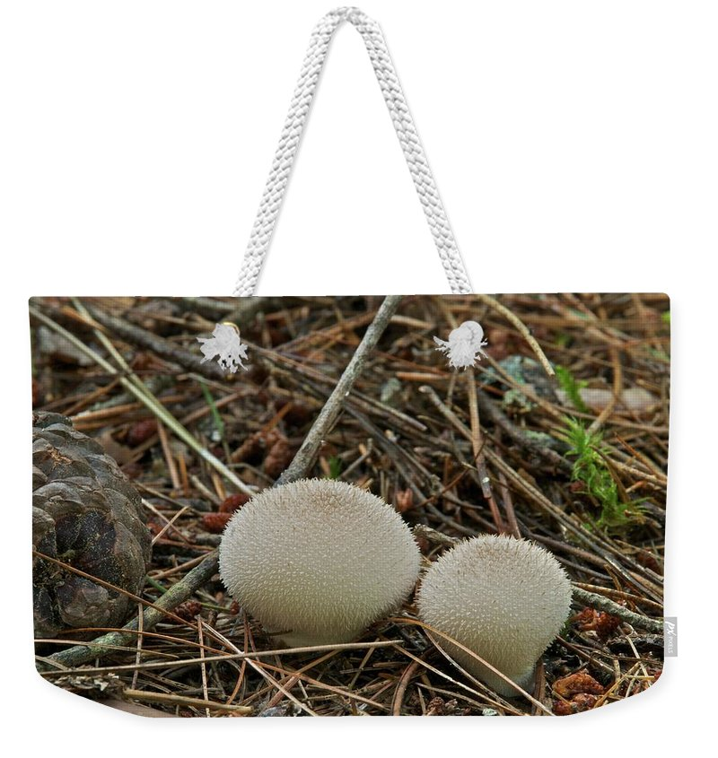 Puff Ball Weekender Tote Bag featuring the photograph Spiny Puff Balls by Michael Peychich