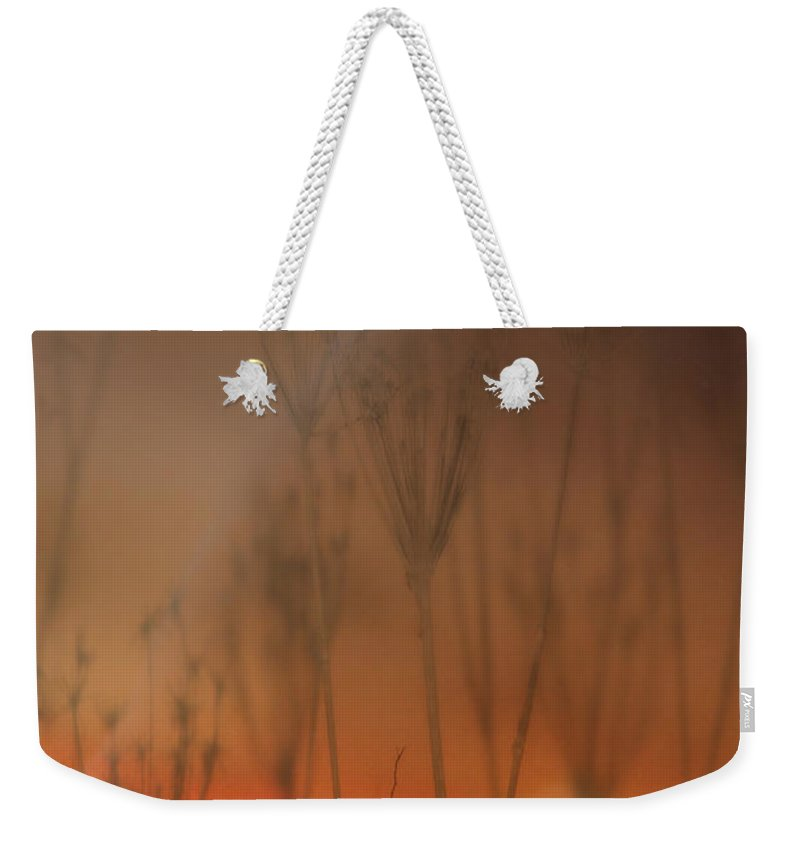 Australia Weekender Tote Bag featuring the photograph Spirit Of The Land by Vicki Ferrari