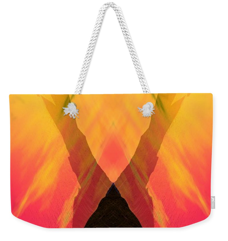 Weekender Tote Bag featuring the digital art Spirit Of The Mountain by David Lane