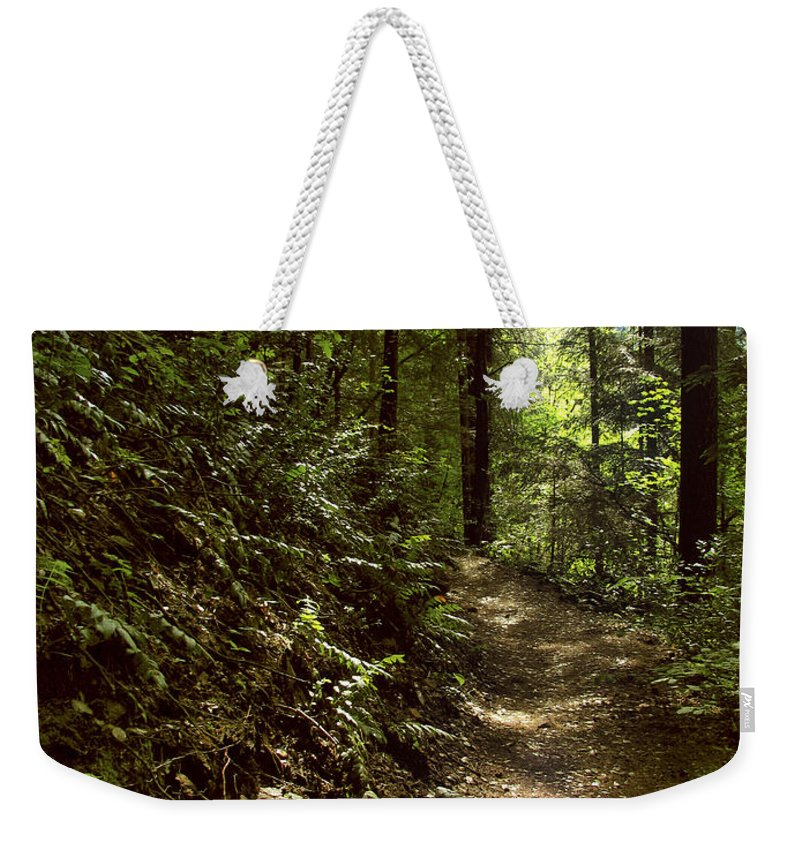 Landscape Weekender Tote Bag featuring the photograph Spirit Of The Wood by Karen W Meyer