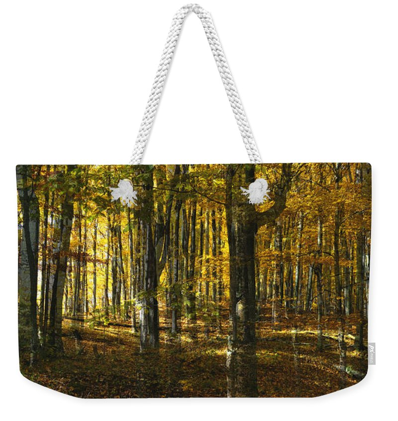 Woods Weekender Tote Bag featuring the photograph Spirits In The Woods by Tim Nyberg
