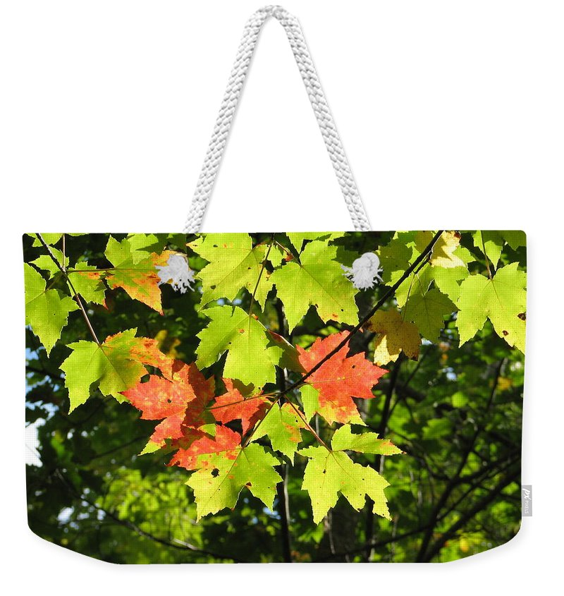 Fall Weekender Tote Bag featuring the photograph Splattered Paint by Kelly Mezzapelle