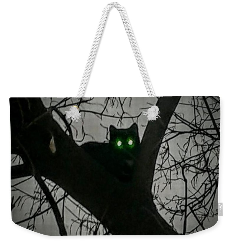 Cat Weekender Tote Bag featuring the photograph Spooky Cat by Amy Clements
