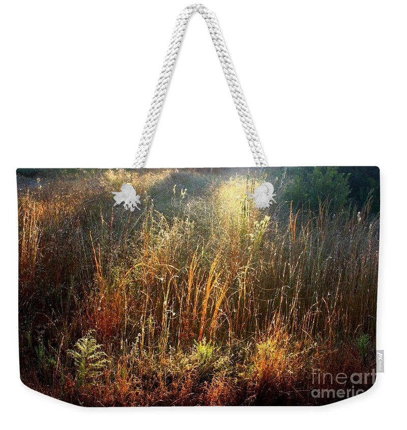 Marsh Weekender Tote Bag featuring the photograph Spotlight On The Marsh by Carol Groenen