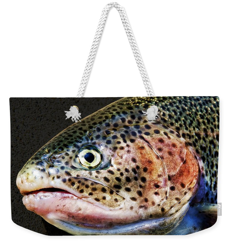 Fish Weekender Tote Bag featuring the photograph Spotted by Kelley King