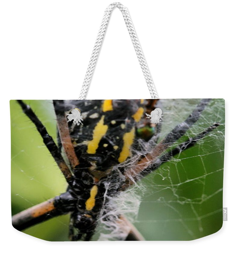Argiope Weekender Tote Bag featuring the photograph Sprawled by Angela Rath