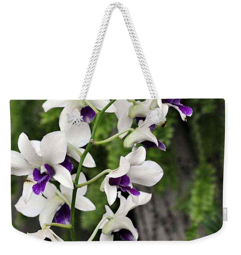 Clay Weekender Tote Bag featuring the photograph Spray by Clayton Bruster
