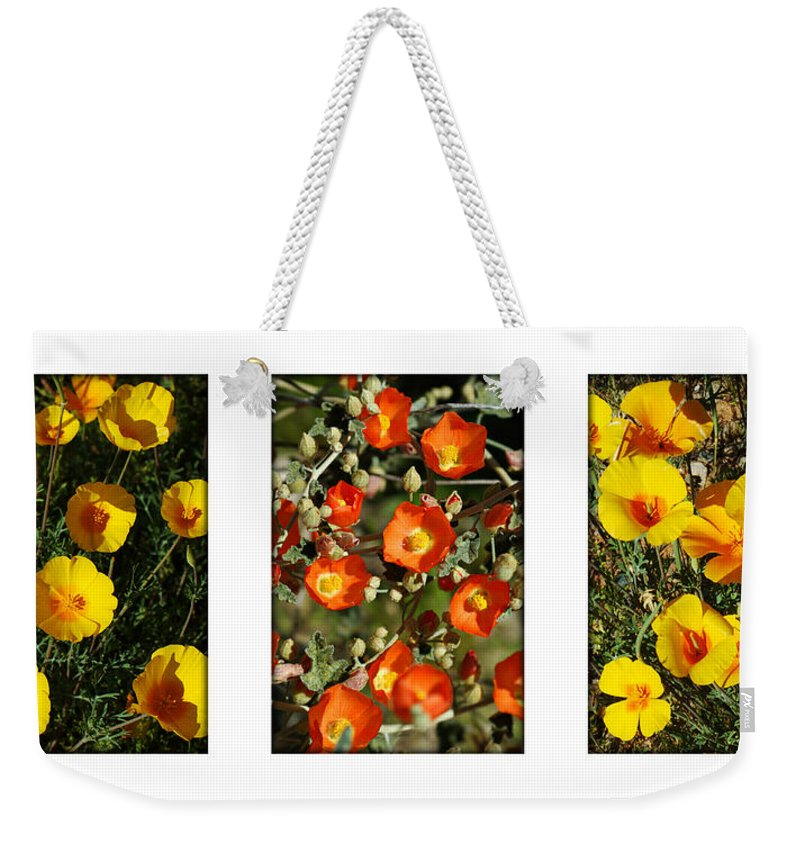 Arizona Weekender Tote Bag featuring the photograph Spring - Desert Style 2 by Jill Reger