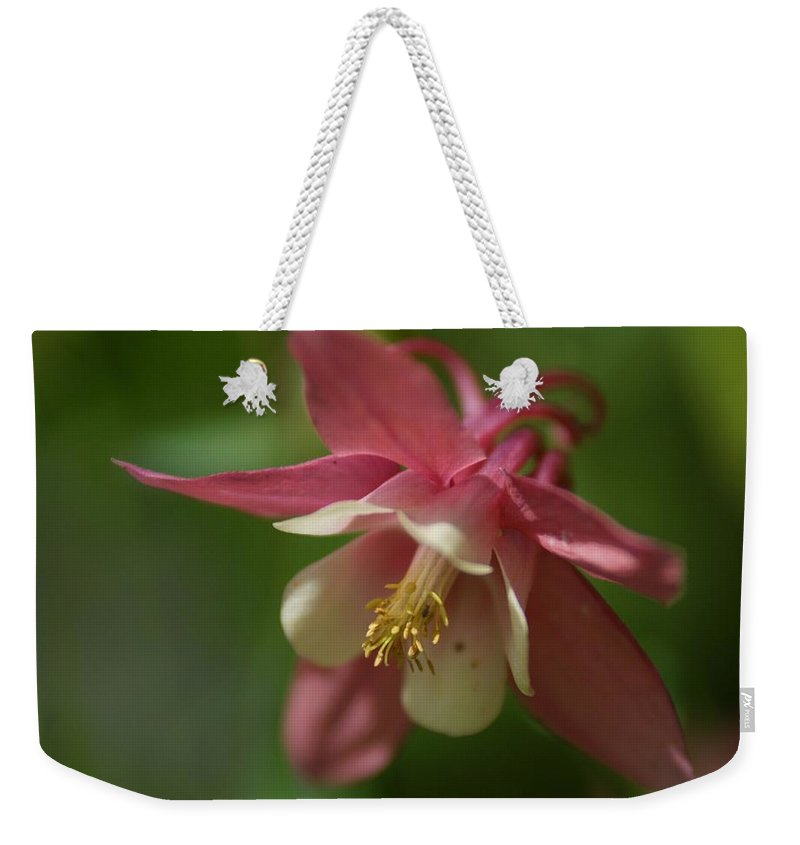 Flower Weekender Tote Bag featuring the photograph Spring 1 by Alex Grichenko