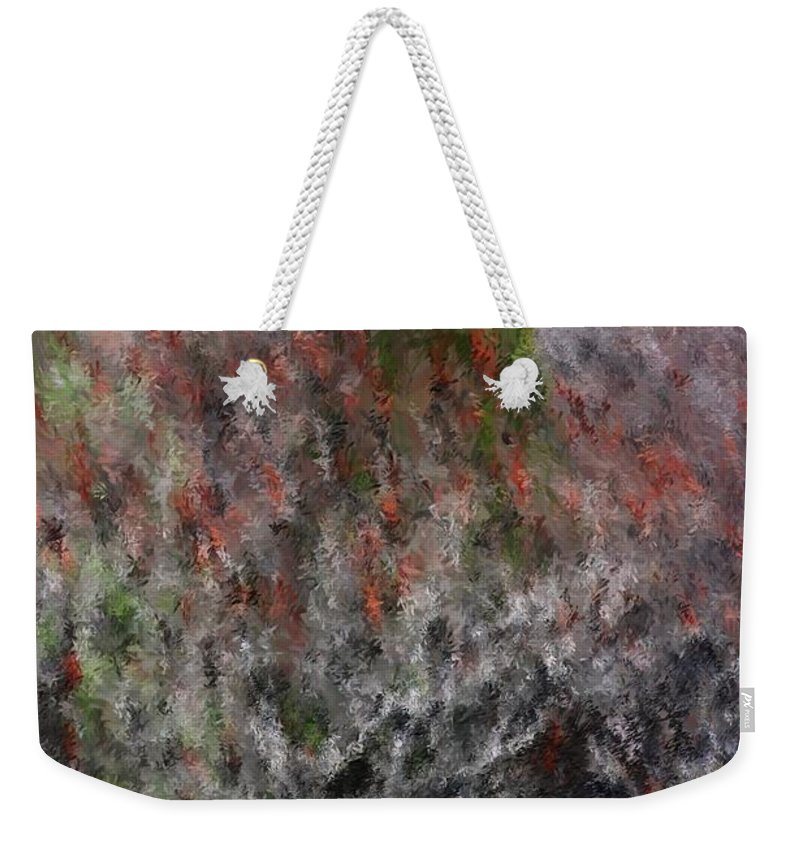 Spring Weekender Tote Bag featuring the photograph Spring At The Hacienda by David Lane