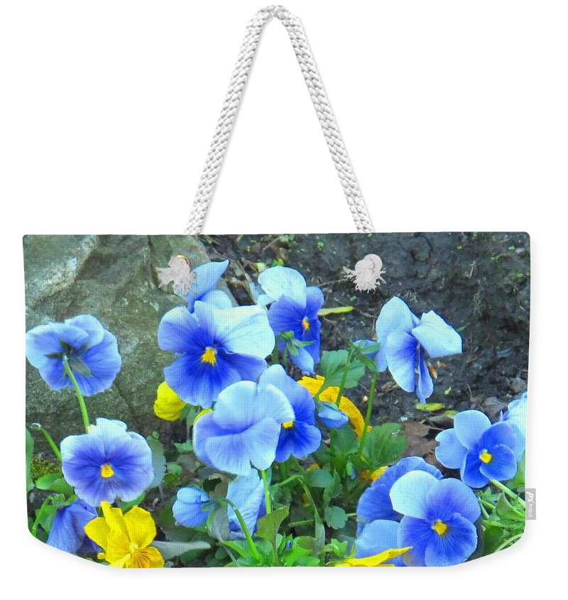 Blue Weekender Tote Bag featuring the photograph Spring Beauties by Ian MacDonald