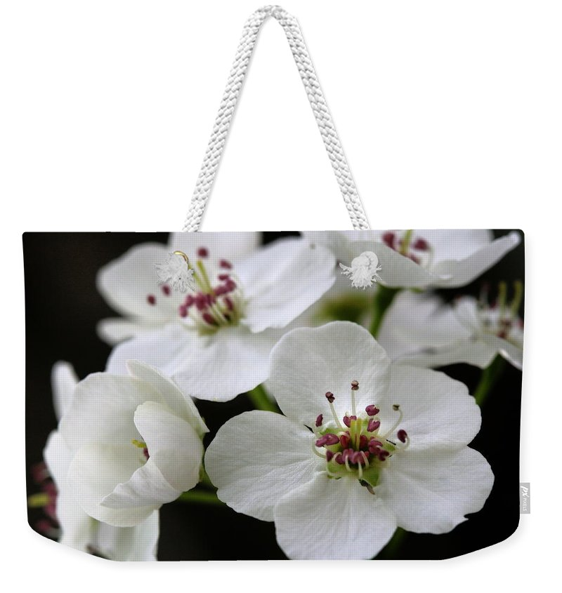Flower Weekender Tote Bag featuring the photograph Spring Blossoms by Angela Rath