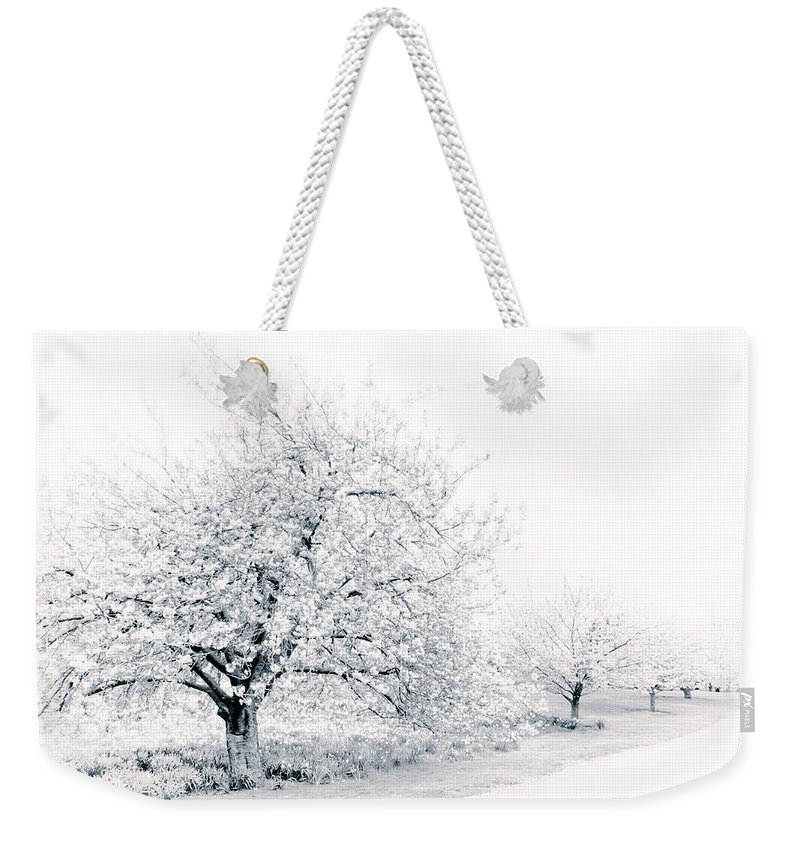 Nature Weekender Tote Bag featuring the photograph Spring Cherry In High-key by Jessica Jenney