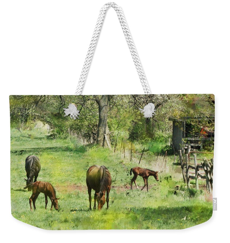 Spring Colts Weekender Tote Bag featuring the digital art Spring Colts by John Beck
