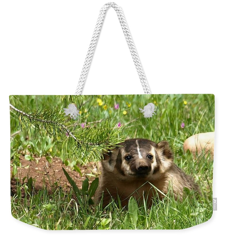 Badger Weekender Tote Bag featuring the photograph Spring Fever by DeeLon Merritt