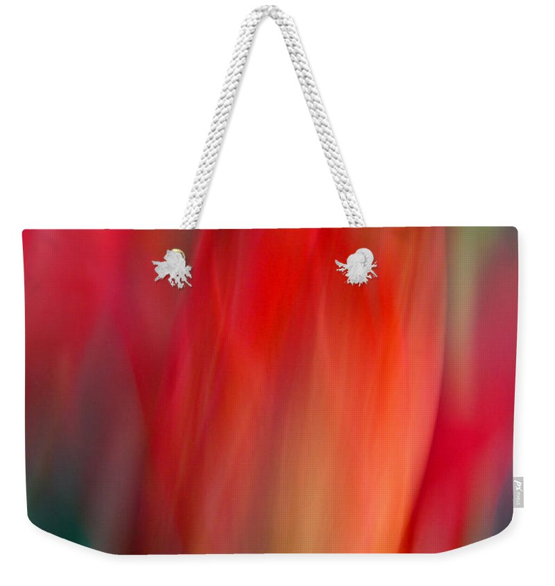 Tulip Weekender Tote Bag featuring the photograph Spring Fling by Neil Shapiro