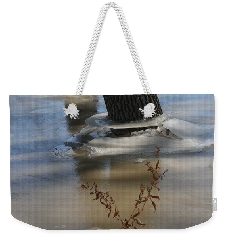 Spring Weekender Tote Bag featuring the photograph Spring Flood by Mary Mikawoz