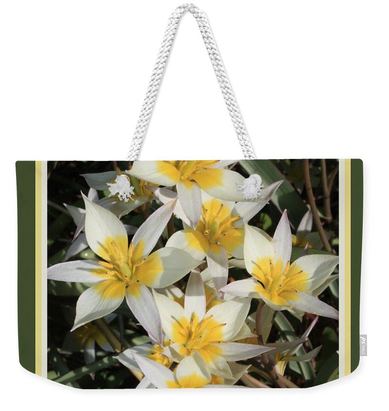 Spring Flowers Weekender Tote Bag featuring the photograph Spring Flowers With Green Border by Carol Groenen