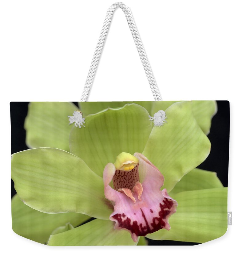 Orchid Weekender Tote Bag featuring the photograph Spring Green by Terri Winkler