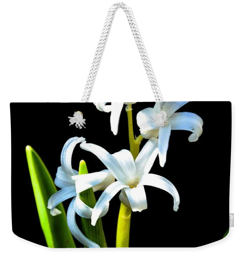 Macro Weekender Tote Bag featuring the photograph Spring Has Sprung by Lisa Kilby