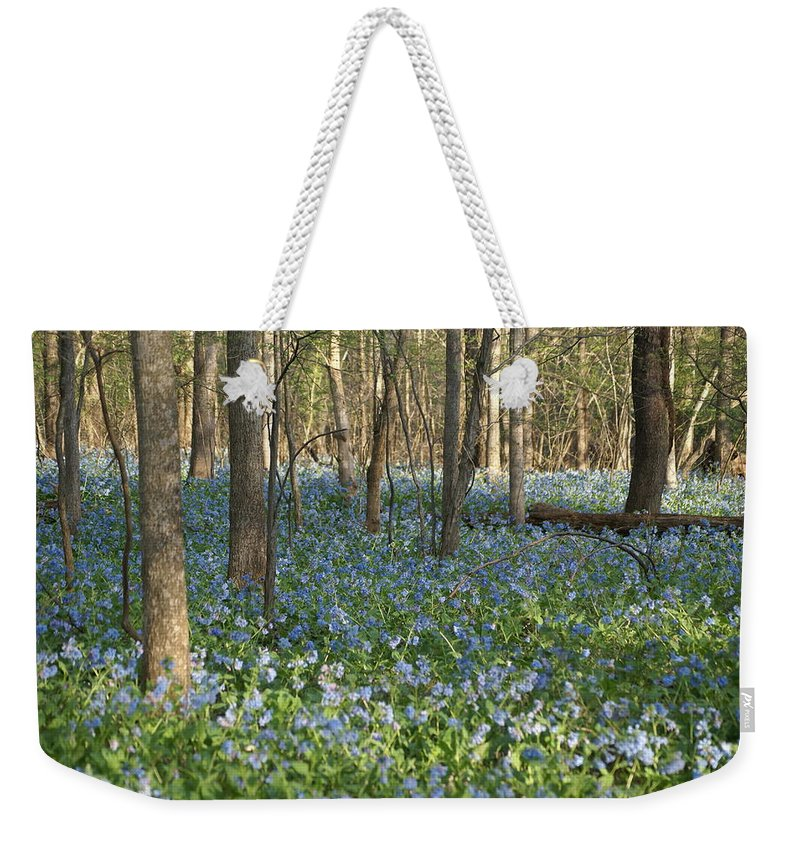 Bluebells Weekender Tote Bag featuring the photograph Spring by Heidi Poulin