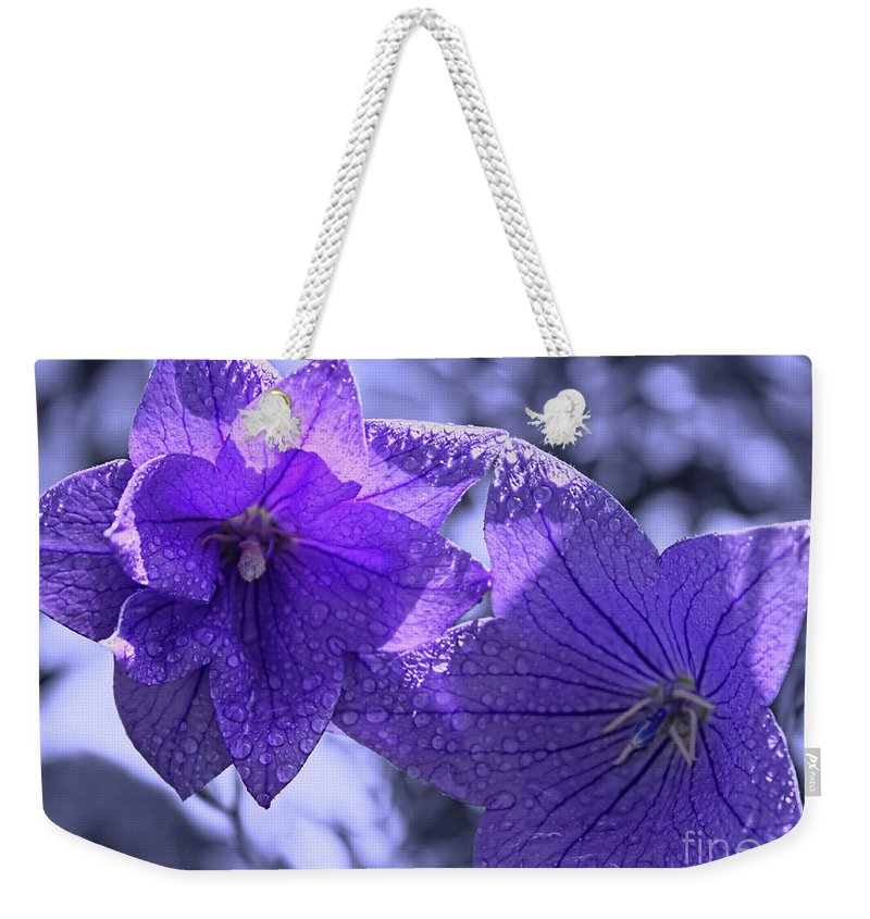 Purple Balloon Flowers Weekender Tote Bag featuring the photograph Spring Hope by Cathy Beharriell