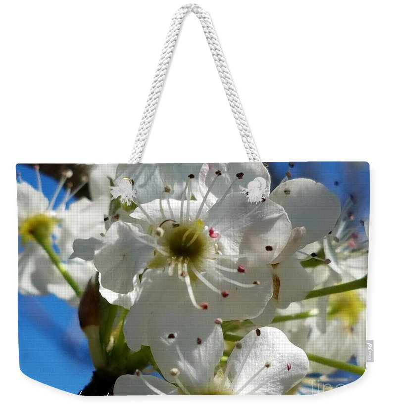 Spring Weekender Tote Bag featuring the photograph Spring by Maria Urso