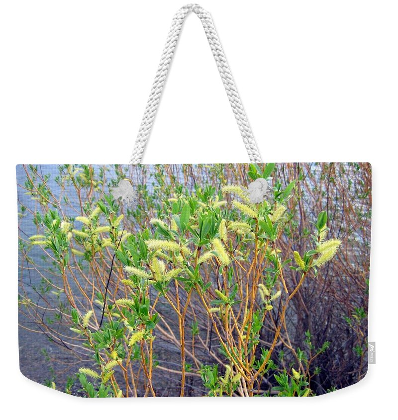 Shoreline Weekender Tote Bag featuring the photograph Spring Shoreline by Will Borden