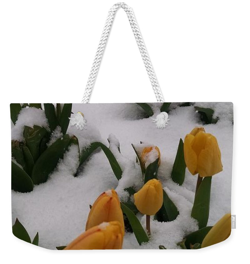 Spring Snow Weekender Tote Bag featuring the photograph Spring Snow by Jennifer Forsyth