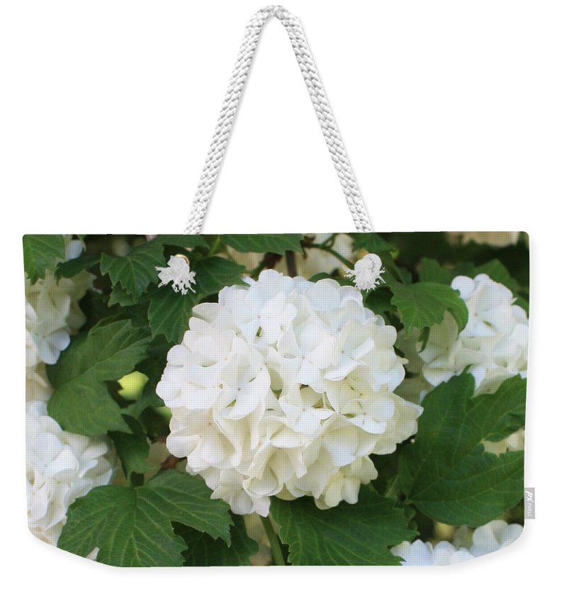 Snowball Weekender Tote Bag featuring the photograph Spring Snowball by Carol Groenen