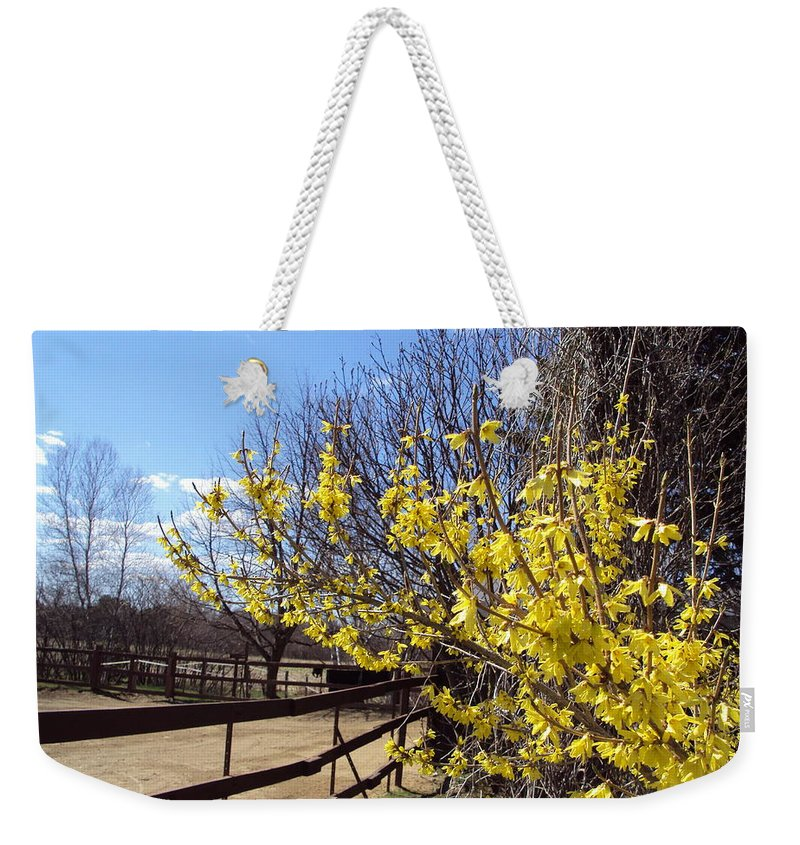 Weekender Tote Bag featuring the photograph Spring Time by Line Gagne