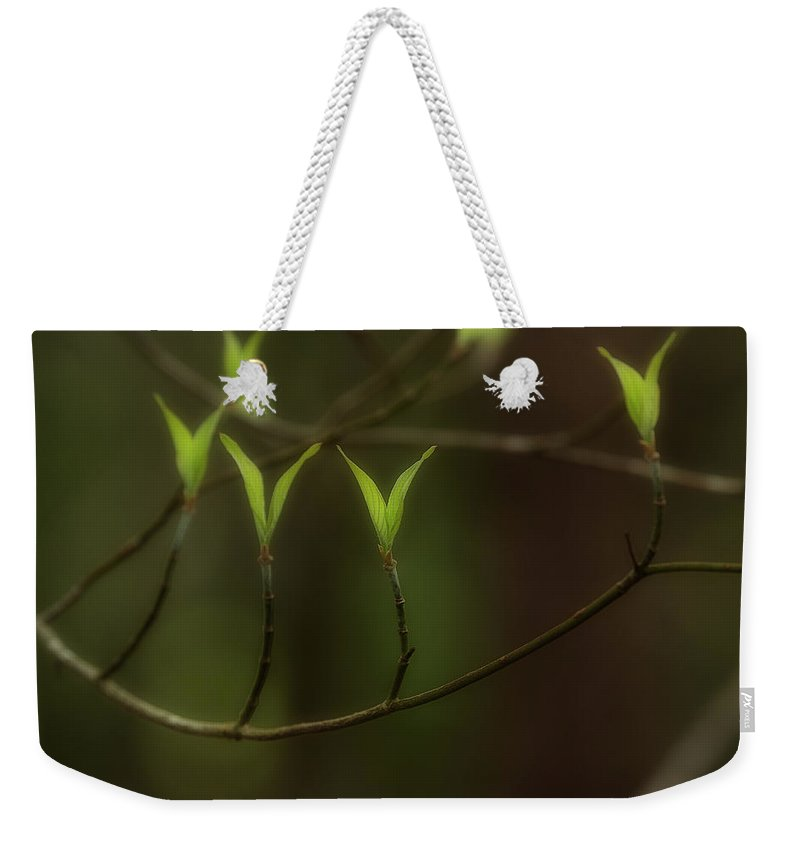 Spring Weekender Tote Bag featuring the photograph Spring Time by Mike Eingle