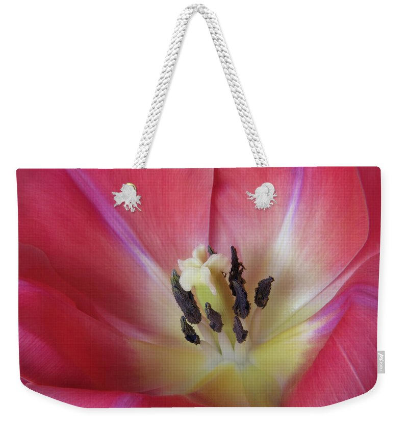 Bloom Weekender Tote Bag featuring the photograph Spring Tulip by David and Carol Kelly