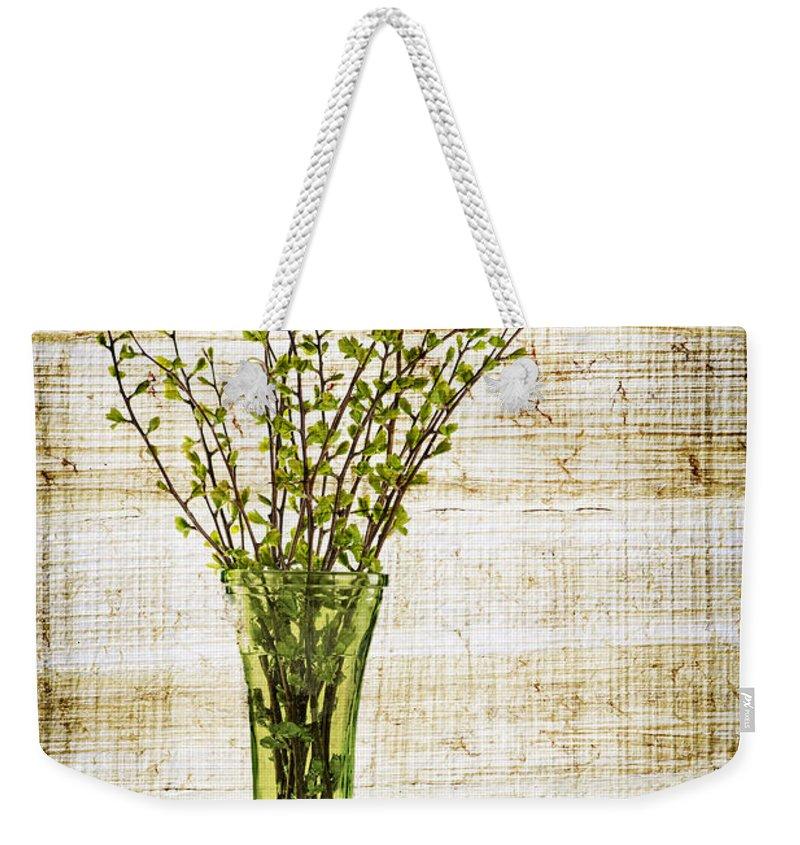 Spring Weekender Tote Bag featuring the photograph Spring Vase by Elena Elisseeva