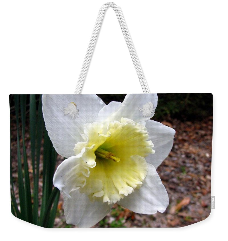 Daffodil Weekender Tote Bag featuring the photograph Spring's First Daffodil 1 by J M Farris Photography