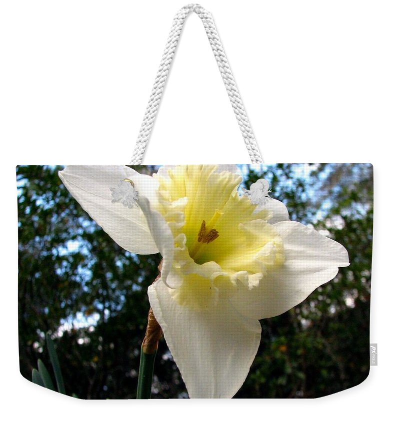 Daffodil Weekender Tote Bag featuring the photograph Spring's First Daffodil 3 by J M Farris Photography
