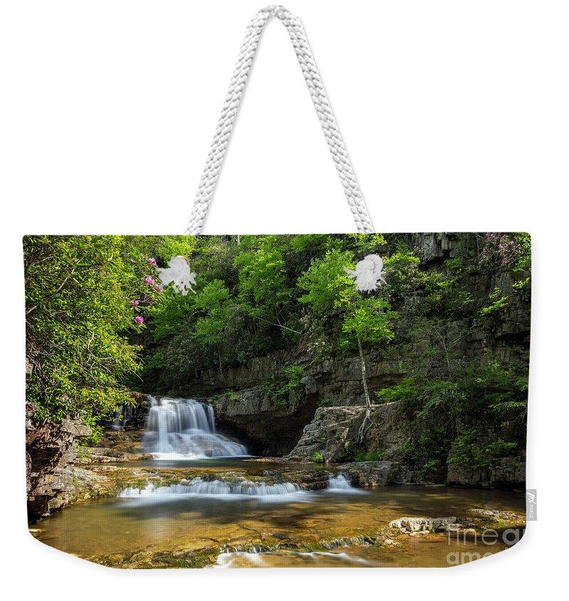 Spring Weekender Tote Bag featuring the photograph Springtime At Saint Mary's Falls Virginia by Karen Jorstad