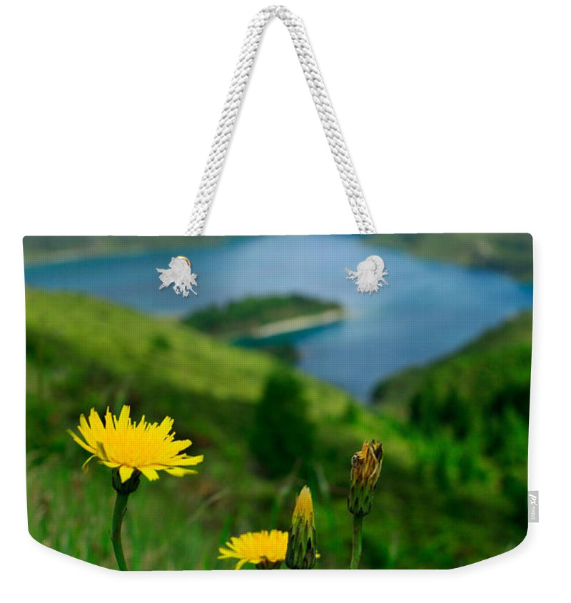 Caldera Weekender Tote Bag featuring the photograph Springtime In Fogo Crater by Gaspar Avila