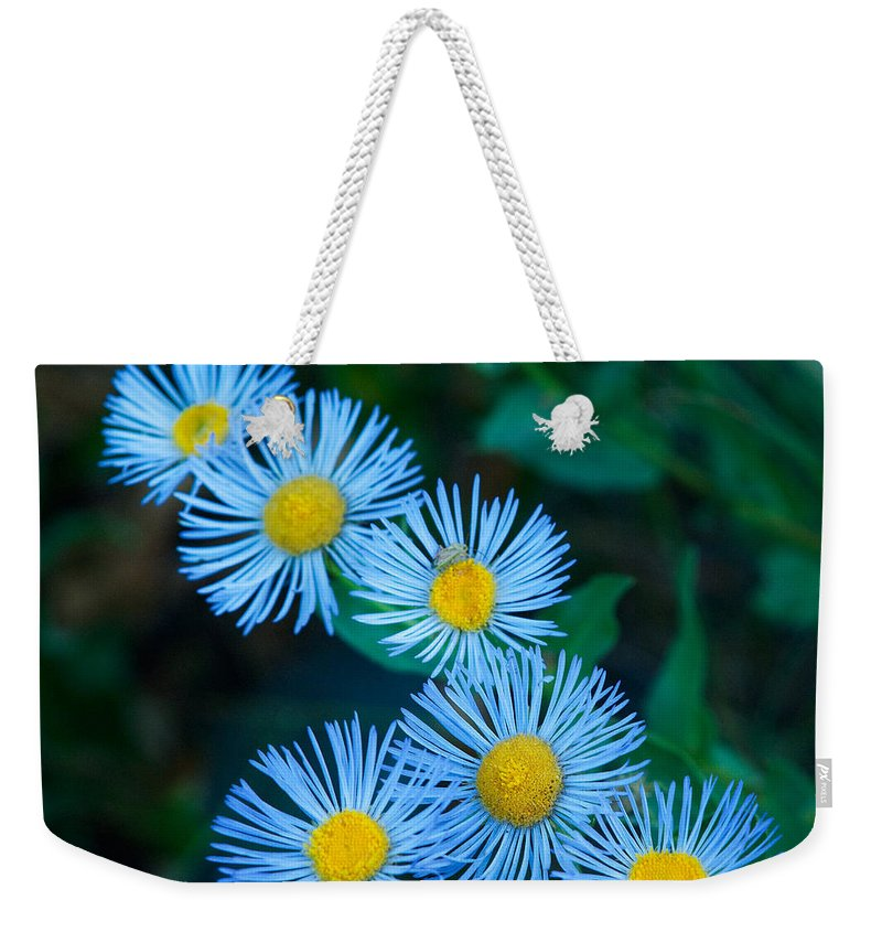 Grand Teton Weekender Tote Bag featuring the photograph Springtime In Grand Teton by Sandra Bronstein